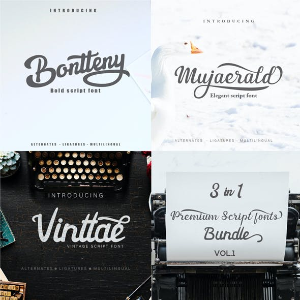 3 in 1 Script fonts bundle