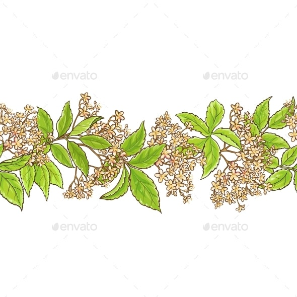 Elderberry Branch Vector Pattern - Food Objects
