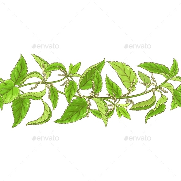 Nettle Vector Pattern - Health/Medicine Conceptual