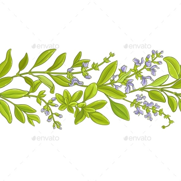 Sage Branch  Vector Pattern - Food Objects