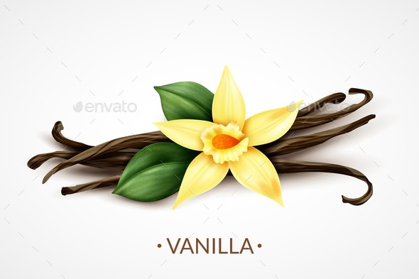 Vanilla Flower Realistic Image - Food Objects