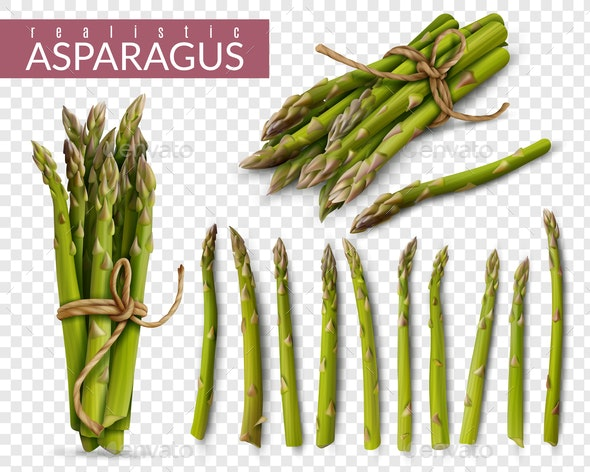 Asparagus Realistic Transparent Set - Food Objects