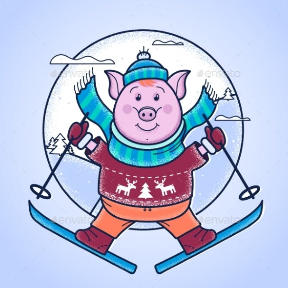 Pig in the Winter Jumps From a Springboard on Skis