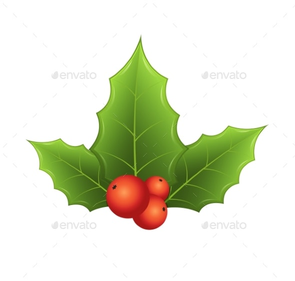Twig of Holly with Leaves and Red Berries on White - Christmas Seasons/Holidays