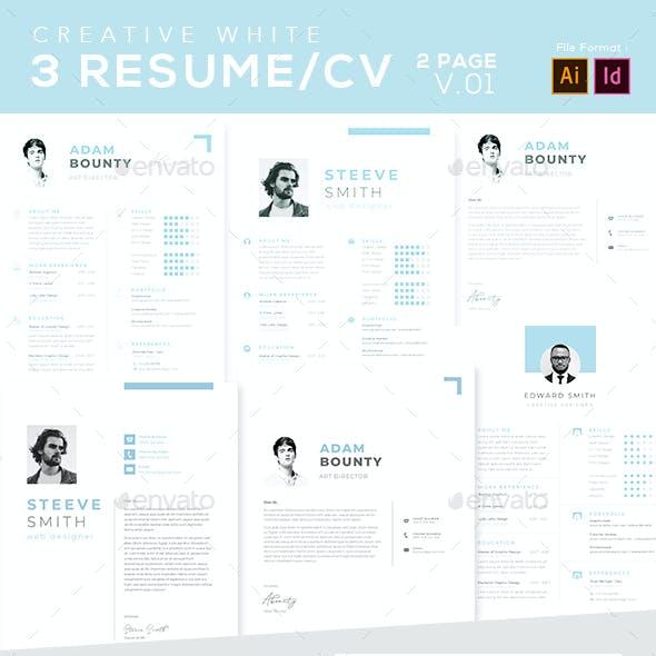Resume CV - 02 Page v.01