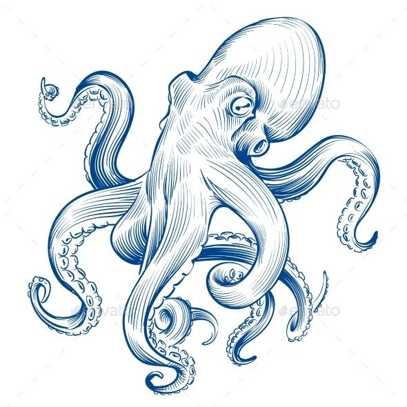 Vintage Octopus. Hand Drawn Squid Engraved Ocean - Animals Characters