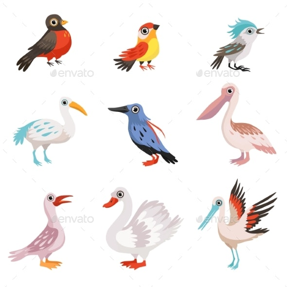 Collection of Beautiful Birds, Crane, Stork, Swan - Animals Characters