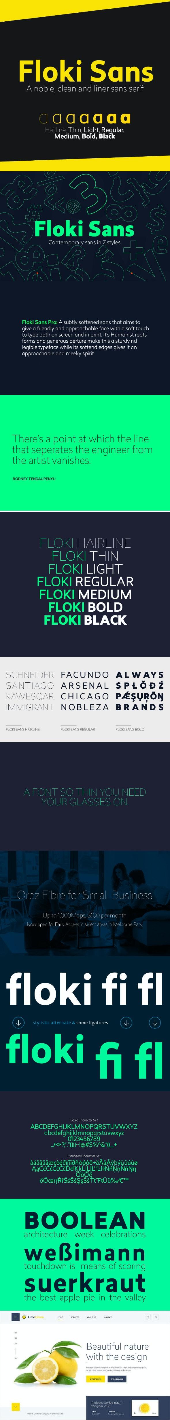 Floki Sans Pro Font (7 Weights) - Sans-Serif Fonts