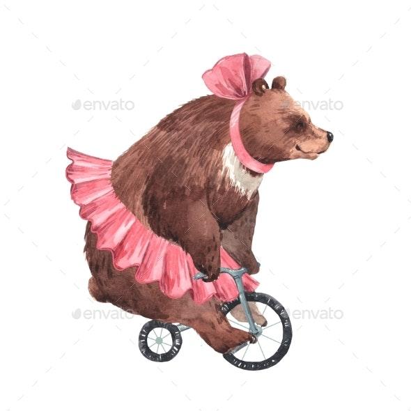 Watercolor Circus Bear - Miscellaneous Illustrations