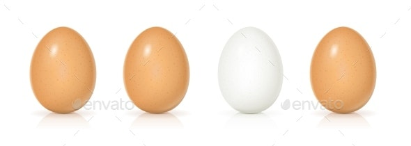 Set of Eggs - Organic Objects Objects