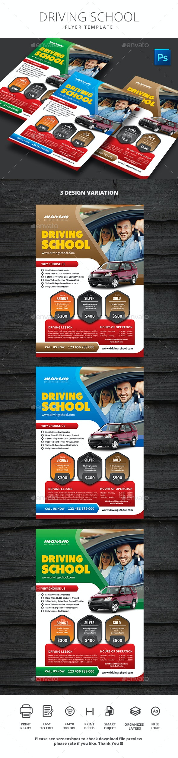 Driving School - Flyers Print Templates