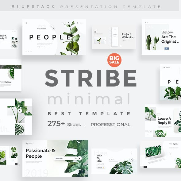 Stribe Minimal Design Keynote Template