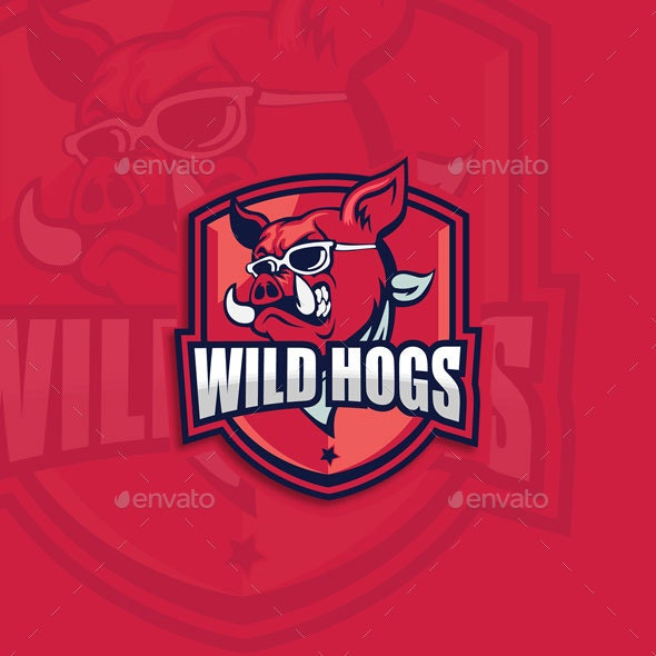Wild Hogs - Sports/Activity Conceptual