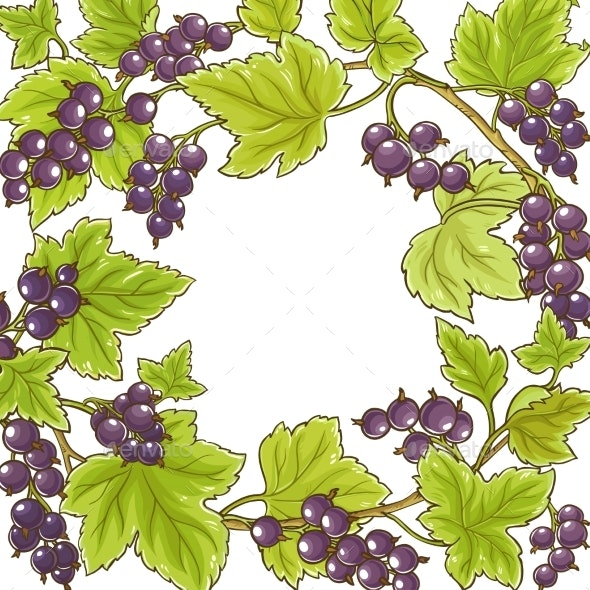Black Currant Vector Frame - Food Objects