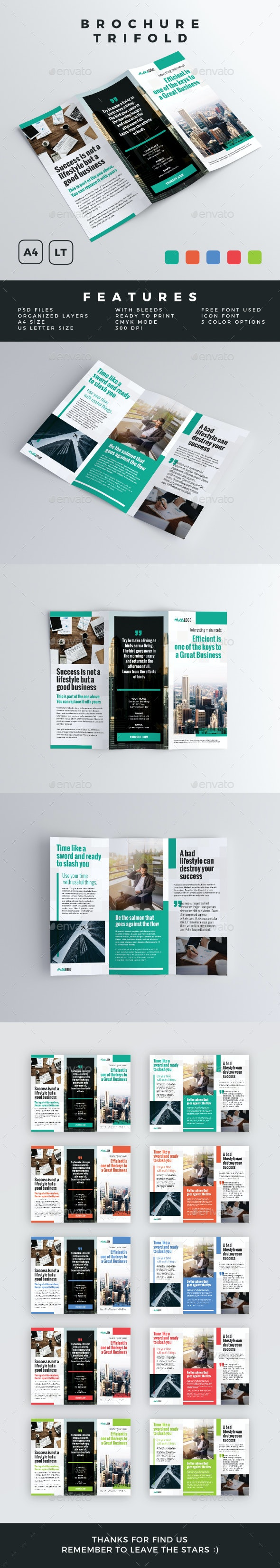 Brochure - Trifold - Brochures Print Templates
