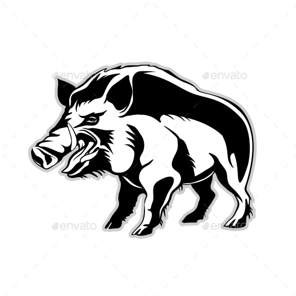 Silhouette of a Wild Boar - Animals Characters