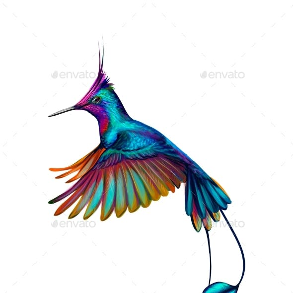 Hummingbird From a Splash of Watercolor