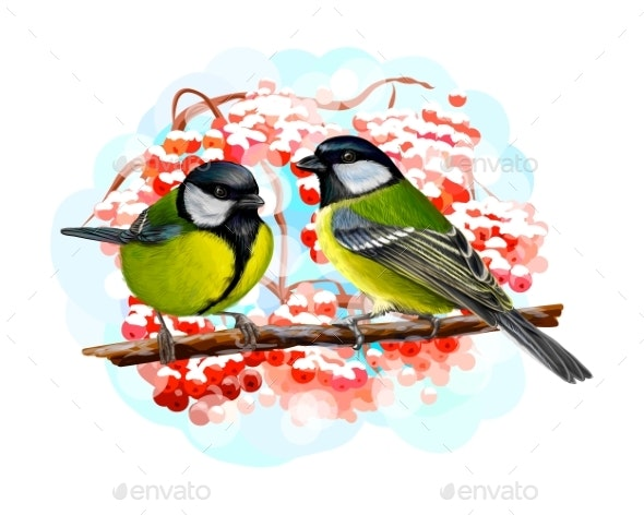 Tit Birds Sitting on a Branch on White Background - Animals Characters