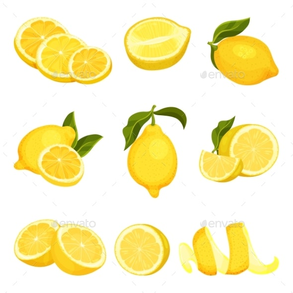 Detailed Vector Set of Sliced and Whole Lemons - Food Objects