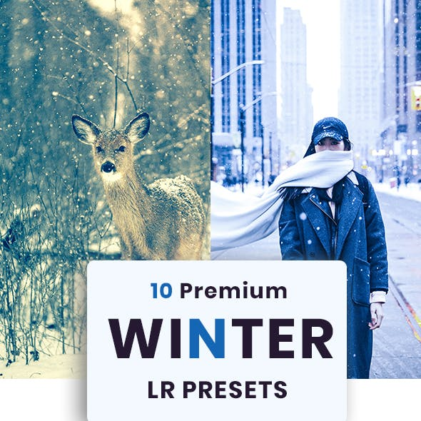 10 Winter Premium Lightroom Presets