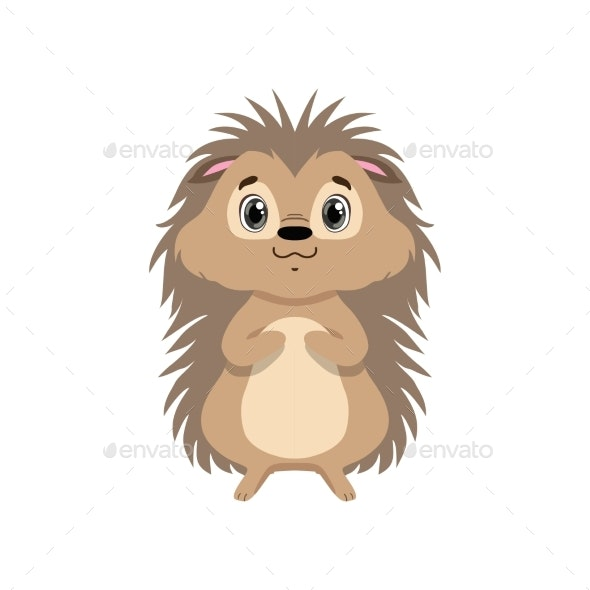 Hedgehog - Animals Characters
