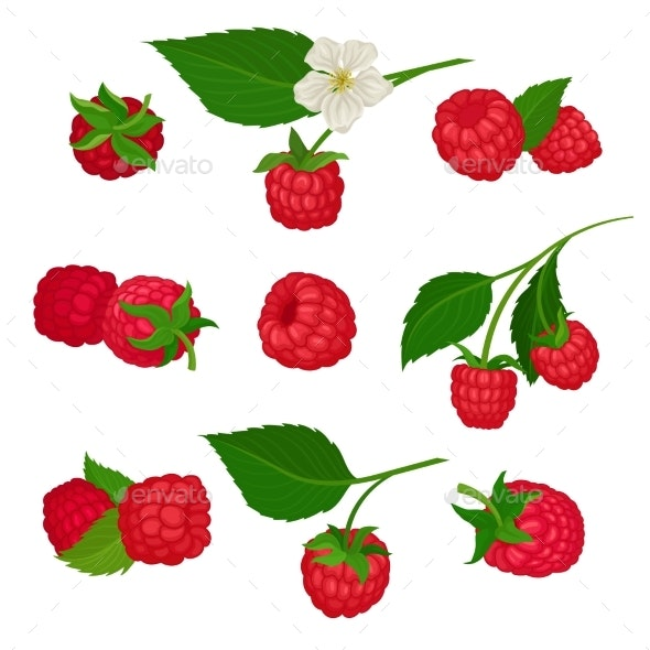 Set of Raspberry Icons - Food Objects