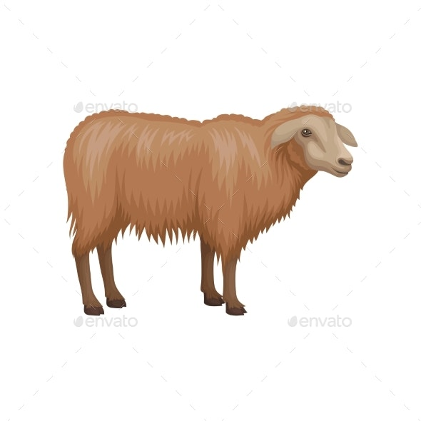 Flat Vector Icon of Young Sheep - Animals Characters