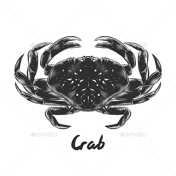 Hand Drawn Sketch of Crab - Animals Characters