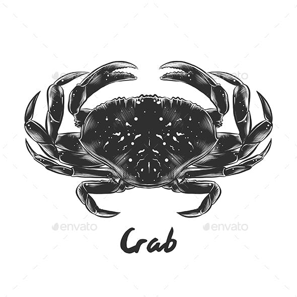 Hand Drawn Sketch of Crab
