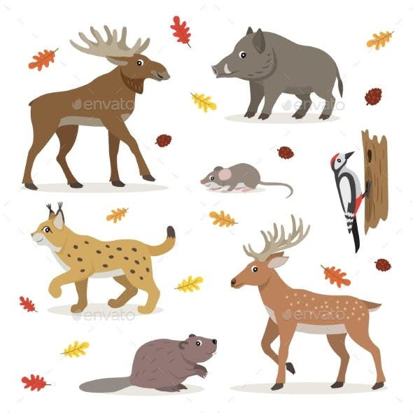 Set of Forest Wild Animals Isolated on White