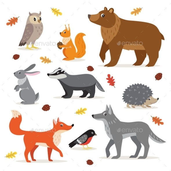 Set of Forest Woodland Animals Isolated Vector - Animals Characters