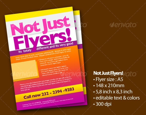 Not Just Flyers! - Corporate Flyers