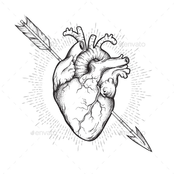 Human Heart Pierced with Cherubs Arrow - Health/Medicine Conceptual