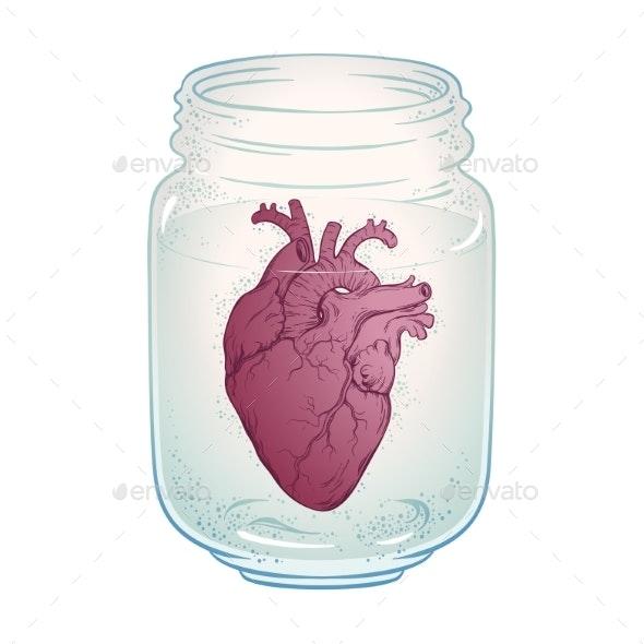 Human Heart in Jar - Miscellaneous Vectors