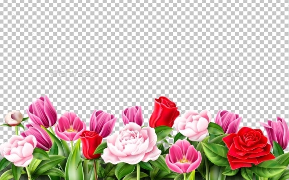 Vector Tulip Rose Peony Flower on Transparent - Flowers & Plants Nature