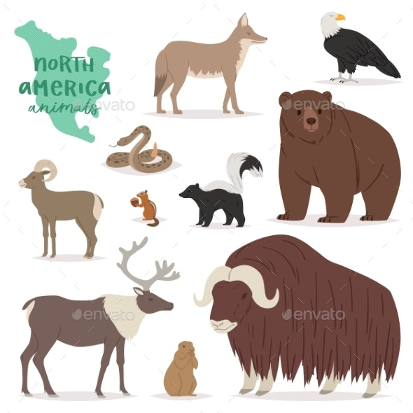 Animal Vectors - Animals Characters