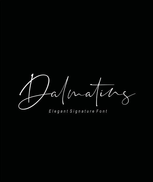 Dalmatins // Elegant Signature Font - Hand-writing Script