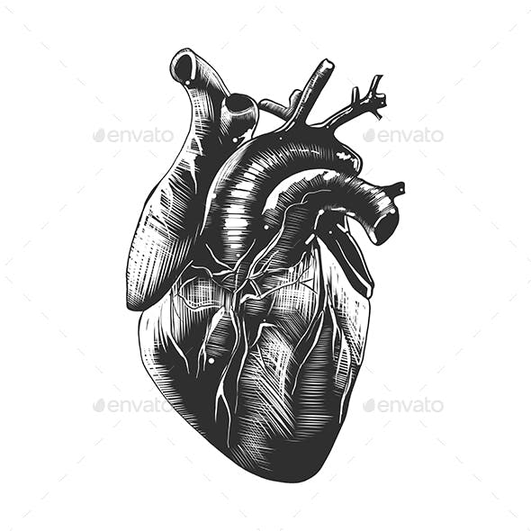 Heart In Monochrome Isolated