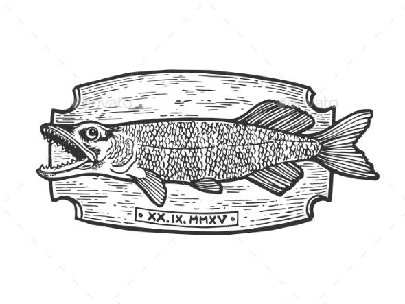 Fish Trophy Engraving Vector Illustration - Miscellaneous Vectors