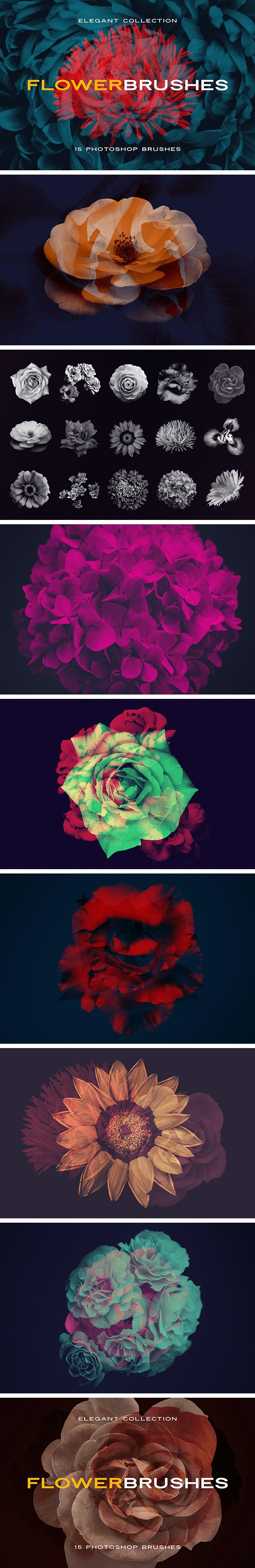 Elegant Flower Brushes for Photoshop - Brushes Photoshop