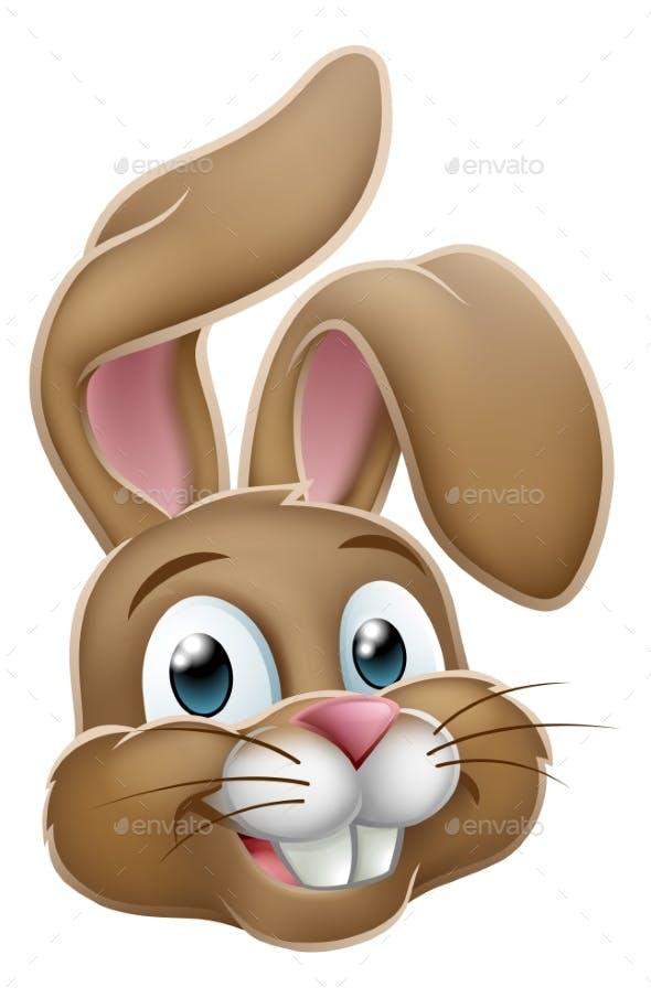 Easter Bunny Rabbit Face Cartoon