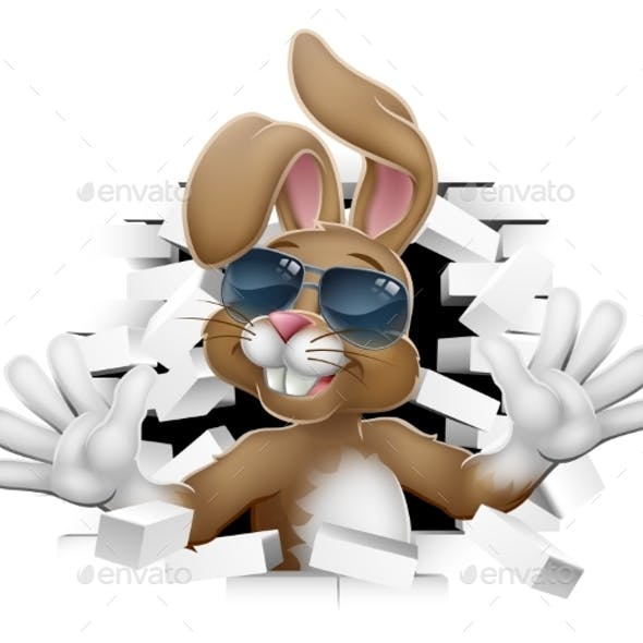 Easter Bunny Rabbit in Shades Coming Through Wall