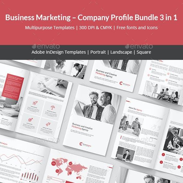 Business Marketing – Company Profile Bundle 3 in 1
