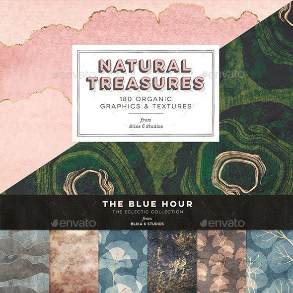 Natural Treasures: 180 Organic Graphics and Textures