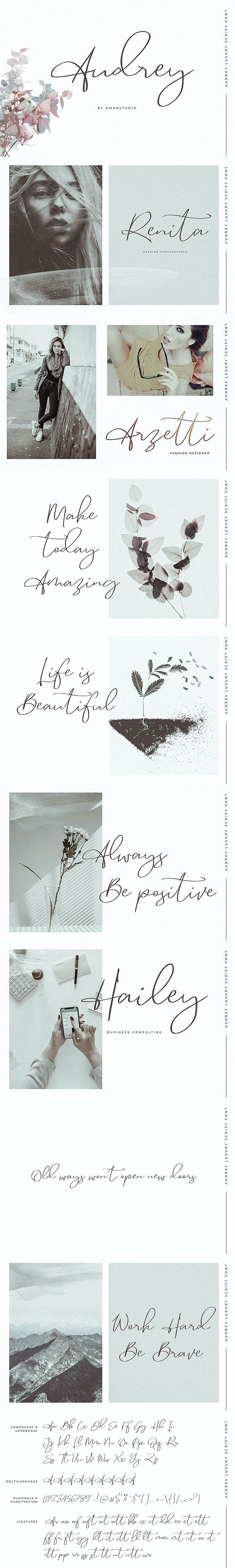 Audrey | Luxury Script Font - Hand-writing Script