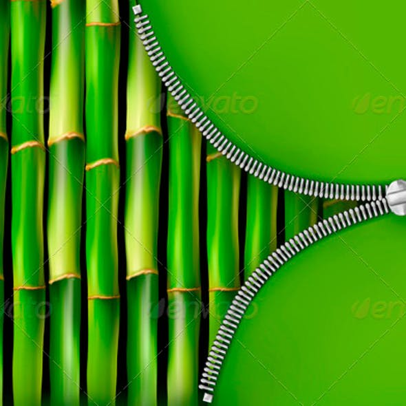 Bamboo Background with Open Zipper