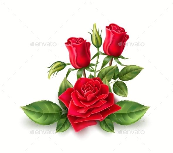Vector 3d Realistic Red Rose Elegant Bouquet - Flowers & Plants Nature