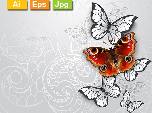 Gray Background with Peacock Butterfly - Backgrounds Decorative