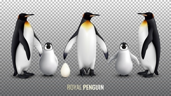 Royal Penguin Realistic Set - Animals Characters