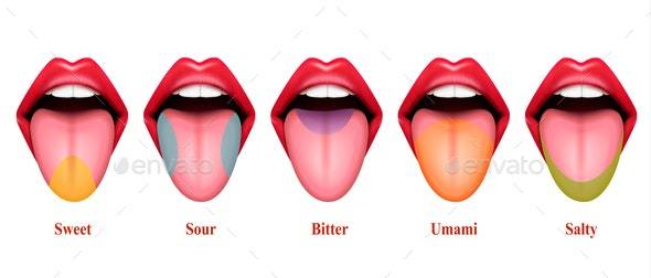 Basic Tastes Realistic Composition - Health/Medicine Conceptual
